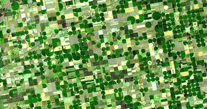 crops_thumb1
