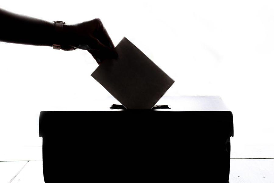 Case Study: Voting